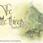 the-little-things-sofia-busy-humans